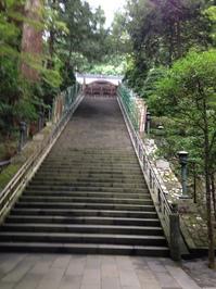 6納札場から祈祷殿.JPGのサムネール画像