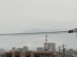1月22日よこ.JPG