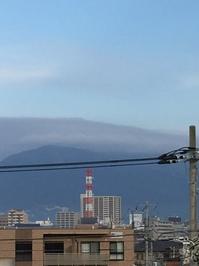 1月26日たて1.JPGのサムネール画像