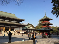 本堂前広場.JPG