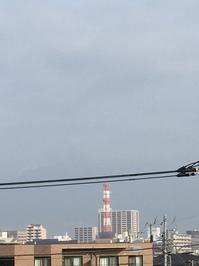 2月24日たて.JPGのサムネール画像