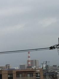 2月25日たて.JPGのサムネール画像