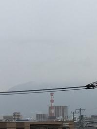 2月26日たて.JPGのサムネール画像