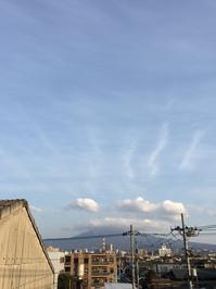 3月12日ワイド.JPGのサムネール画像