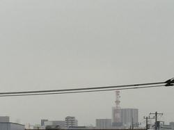 3月16日よこ.JPG