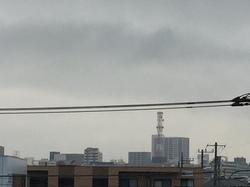 3月4日よこ.JPG