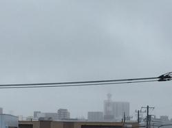 4月11日よこ.JPGのサムネール画像