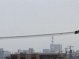4月28日よこ.JPG