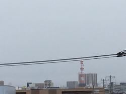 4月5日よこ.JPG