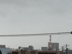 4月7日よこ.JPG
