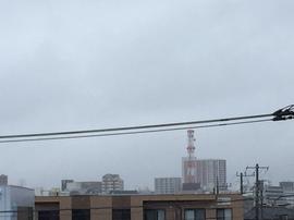 5月16日よこ.JPG