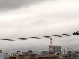 5月19日よこ.JPGのサムネール画像