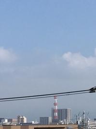5月20日たて.JPGのサムネール画像