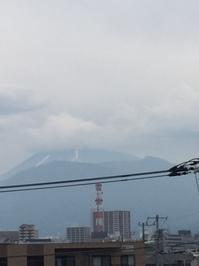 5月29日たて.JPGのサムネール画像