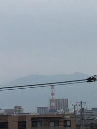 5月9日たて.JPGのサムネール画像