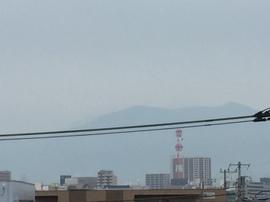 5月9日よこ.JPGのサムネール画像