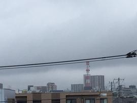 6月27日よこ.JPG