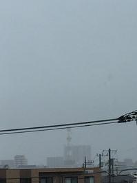 7月17日たて.JPGのサムネール画像