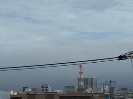 7月20日よこ.JPGのサムネール画像