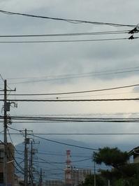 8月23日たて.JPG