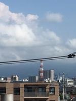 8月7日たて.JPGのサムネール画像