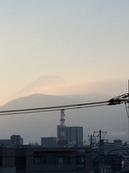 8月9日たて.JPGのサムネール画像のサムネール画像