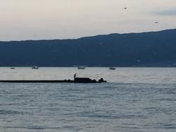 写真5対岸の釣り人.JPGのサムネール画像