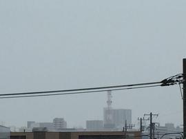 9月1日よこ.JPGのサムネール画像