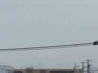 10月11日よこ.JPGのサムネール画像