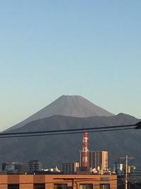 10月8日たて.JPGのサムネール画像
