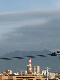11月7日たて.JPGのサムネール画像